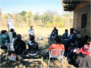 permaculture africa